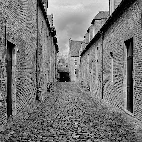 The Béguinage of Louvain by Ingrid Dendievel - Buildings & Architecture Other Exteriors ( béguinage, black and white, louvain )