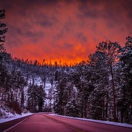 Fiery Evening Sky by Kevin Fechtelkotter - Landscapes Sunsets & Sunrises ( black hills, fiery, winter, red, cold, highway, sunset, outdoors, snow, forest, south dakota, evening light )