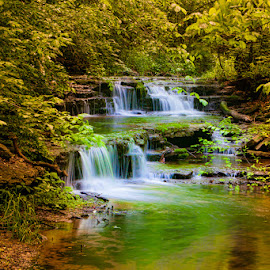 Cascading Falls by Eugene Linzy - Landscapes Waterscapes ( water, waterfalls, creek, cascades, spring )