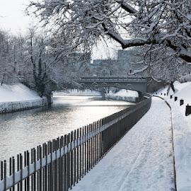 River Ljubljanica  by Alenka Mavri - City,  Street & Park  City Parks ( peaceful, winter, snow, morning, city, river )