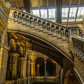 Staircase  by Luke Albright - Buildings & Architecture Public & Historical ( museum, stairs, indoor, staircase, building, architecture )