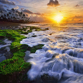 Manyar Sunflare by Hendri Suhandi - Landscapes Beaches ( bali, manyar, sunrise, beach )
