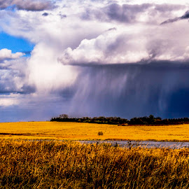Moving through by Bill Phillips - Landscapes Prairies, Meadows & Fields ( clouds, sky, nature, storms, landscape, prairie, rain )