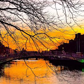 Sunset Dublin by Jimmy Fitz - Buildings & Architecture Bridges & Suspended Structures ( orange, sky, ireland, dublin, sunset, bridge )