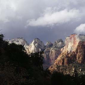 Zion National Park by VAM Photography - Landscapes Mountains & Hills ( nature, travel, places, landscape, zion,  )