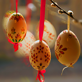 decorative eggs by LADOCKi Elvira - Public Holidays Easter