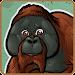 Zoo Wild -- Animal Games Icon