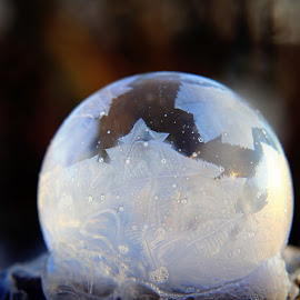 by Crystal  Wilson - Abstract Macro