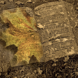 Autumn book by Zenonas Meškauskas - Digital Art Abstract ( sepia, autumn, fall, book, yellow, leaves )