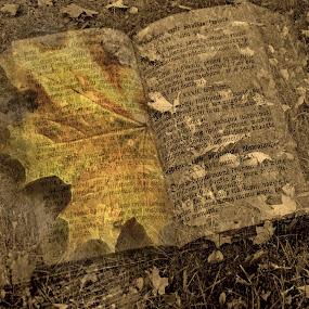 Autumn book by Zenonas Meškauskas - Digital Art Abstract ( sepia, autumn, fall, book, yellow, leaves )