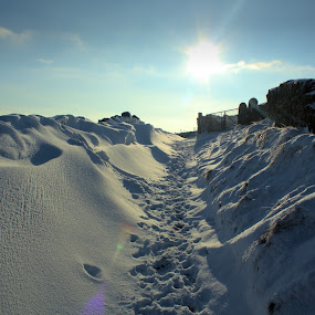 the famous walk by Damien Brearley - Landscapes Weather ( clouds, swat photography, halifax, snow, town, snow drifts )