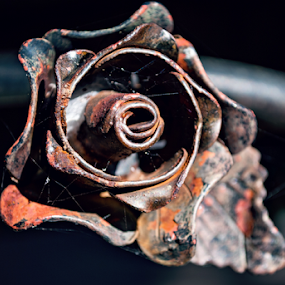 Metal Rose by Jamie Hodge - Artistic Objects Antiques ( rose, metal, spiderweb, rusted, rust, antique )