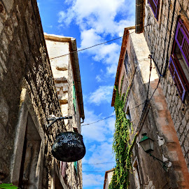 Old stone street by Vedrana Vidovic - City,  Street & Park  Neighborhoods ( nikon, flowers, street, old town, colorful, stone, lifestyle )