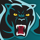 Free Panthers Complete League APK for Windows 8