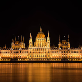 Parliament Building of Budapest by Alin Avram - Buildings & Architecture Public & Historical ( lights, parliament, budapest, night photography, night lights, night scene,  )