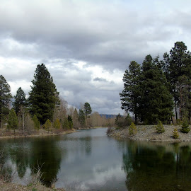 Hansen Pond by Cynthia Dodd - Novices Only Landscapes ( sky, pond, outdoors, waterscape, reflections, nature, clouds, trees )