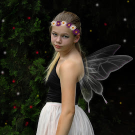 fairy by Lize Hill - Digital Art People