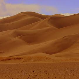 by Steve Tharp - Landscapes Deserts