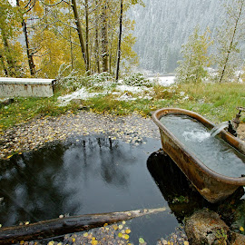 Natural Hot Tub by Justin Giffin - Nature Up Close Water ( water, nature, autumn, snow, colorado, hot spring )