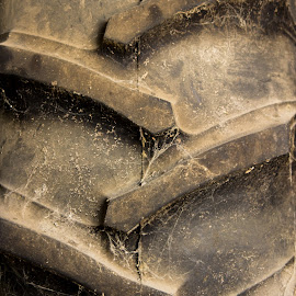 Tractor Tire by Adam Reinert - Transportation Other ( farm, iowa, midwest, tractor, tire )