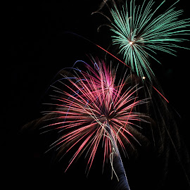 by Liz Huddleston - Abstract Fire & Fireworks ( wow, fourth of july, colors, montana, fireworks, independence, bang )
