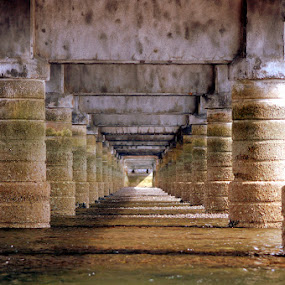 Under The Bridge by Alex Graeme - Buildings & Architecture Bridges & Suspended Structures ( teign, shaldon, bridge )