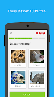 Duolingo: Learn Languages Free APK for Bluestacks