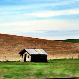 Abandoned in Idaho by Carrie Cadenas - Transportation Roads ( idaho cabin side of the road )