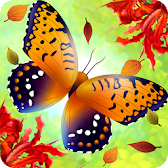 Flutter: Butterfly Sanctuary APK icon