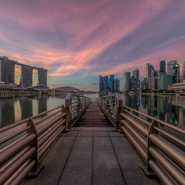 by Gordon Koh - City,  Street & Park  Vistas ( clouds, skyline, reflection, shenton, park, no person, morning city, lake, cityscape, city park, singapore, nightscape, modern, urban, dawn, modern city, asia, mbs, symmetry, sunrise, bridge, panoramic, esplanade )