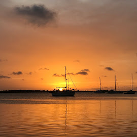 Silhouette Sunset by Susan D'Angelo - Landscapes Sunsets & Sunrises ( clouds, water, waterscape, silhouette, sunset, sea, scenic, boat, golden, caribbean )