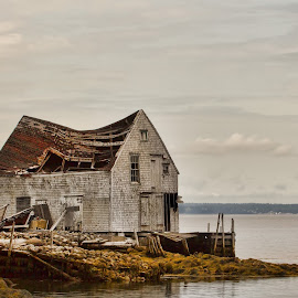 Abandoned Fish house.  by Carl Chalupa - Buildings & Architecture Decaying & Abandoned ( nova scotia, fishing, abandoned )