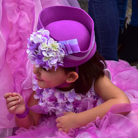 Flower girls by Barbara Walsh - Babies & Children Children Candids ( funchal, pink, parade, flowergirl, fun )