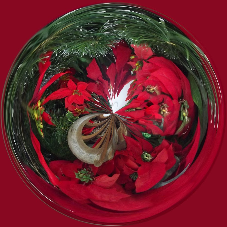 Red Pointsetta with Green Accents by Colleen Legree - Abstract Fine Art ( abstract, circular, red, pointsetta, green, christmas, fine art )