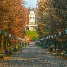 Maksimir by Dunja Dretvić - City,  Street & Park  City Parks