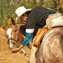 You're a Good Horse by Twin Wranglers Baker - Transportation Other ( horseback riding, westnern, cowboy, horse and rider, trail riding )