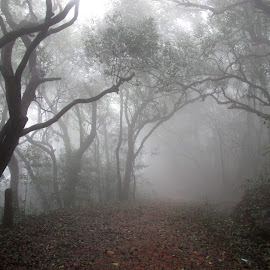 by Dr. Sagar Mayekar - Nature Up Close Trees & Bushes