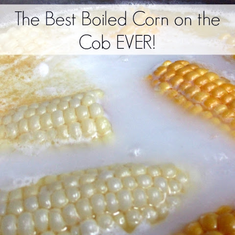 Best Boiled Corn on the Cob EVER