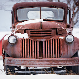 Diastema by Jebark Fineartphotography - Transportation Automobiles ( farm, old, winter, grill, ruined, vintage, truck, snow, transportation, rust, antique, rural )