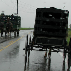 Amish Wagons in the Rain by Christine B. - Transportation Other ( amish, farmers, horses, wagons, rain )