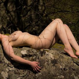 Shadow of Lines Color by Sean Parker - Nudes & Boudoir Artistic Nude ( art nude, color, cracked, rocks, shadows, network )