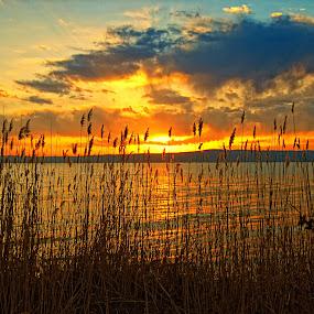 by Davis L. Antonio - Landscapes Waterscapes ( pwcredscapes-dq )