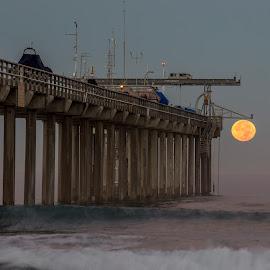 Super moon at Scripps Pier, San Deigo by Vamsi Sata - Landscapes Beaches ( moon set, san diego, scripps pier, super moon, dusk )