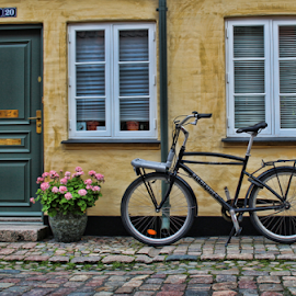 Home and bike by Gianluca Presto - Transportation Bicycles ( home, bike, street, door, windows, flowers, city, bicycle )