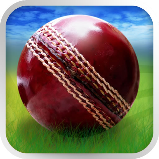 Cricket WorldCup Fever (game)