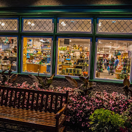 Window Shopping by Darren Sutherland - City,  Street & Park  Markets & Shops