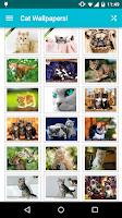 Screenshot of Cat Wallpapers!