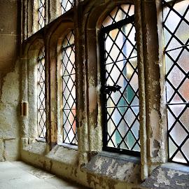 Window by Lauren Galanty - Buildings & Architecture Other Interior ( paris, building, window, versailles, castle, france, architecture, nikon )