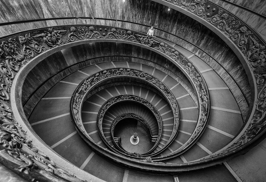 Vatican Spiral Staircase by Bob Stafford - Buildings & Architecture Public & Historical ( europe 2012 may netherlands italy, rome )