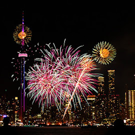 Canada Day Toronto by Sue Connor - Abstract Fire & Fireworks ( canada, canada day, toronto, ontario )
